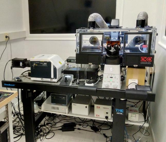 Microscope confocal Institut de Myologie - 14mars18